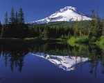 Oregon adoption information laws