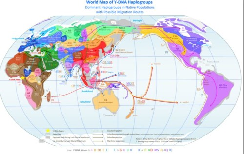 Haplogroups do they help find family